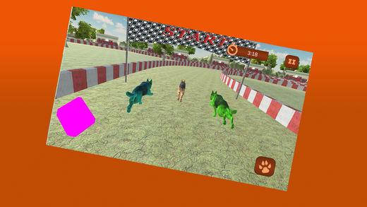 3D狗特技模拟器