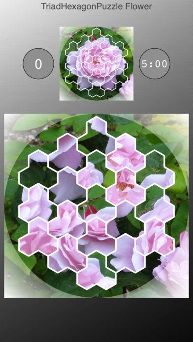 三个六边形拼图 花