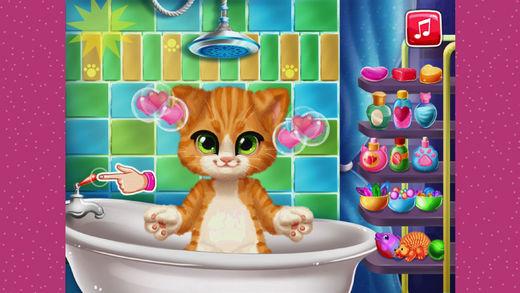给猫咪洗澡