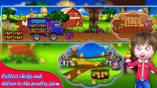 鸡 配种 农场