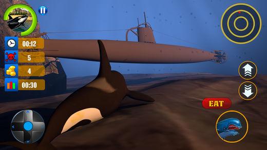 蓝鲸模拟游戏3D