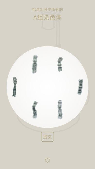 染色体配对