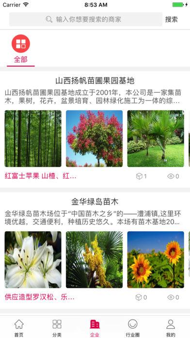 中国苗木交易市场