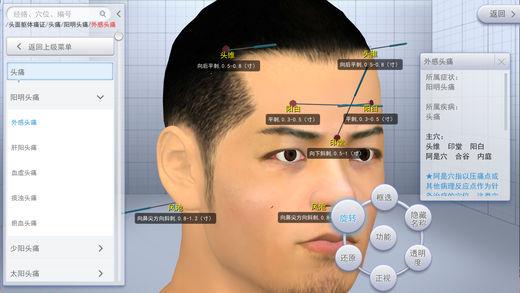 中医3D铜人