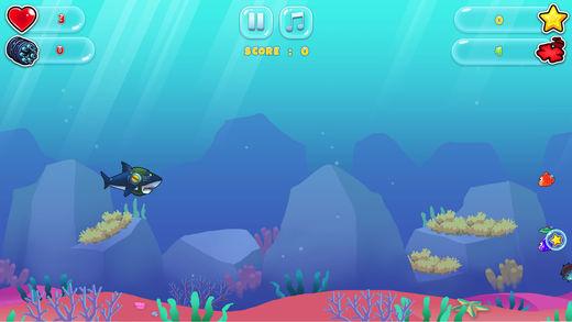 鲨鱼躲避追击海底大冒险