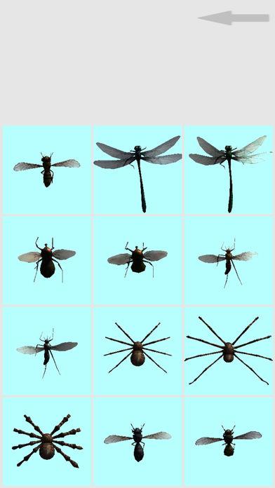 虫子恶作剧