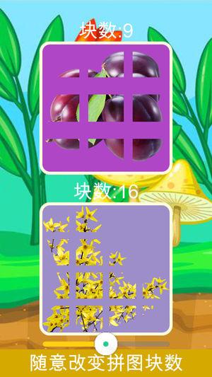 儿童拼图植物园