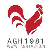 AGH1981 1.9