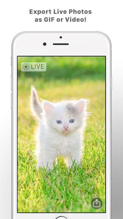 Camera for Live Photos