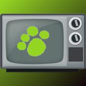 CatTV 1