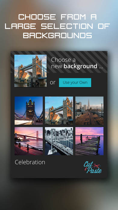 Cut and Paste- add your photos to pictures