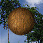 Coconut Juggler