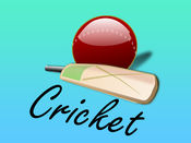 Cricket Stickers 1