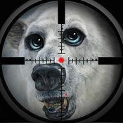 polar bear pro hunting