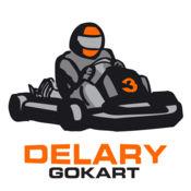 Delary Gokart