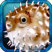 海洋生物 -by Rye Studio 1.2