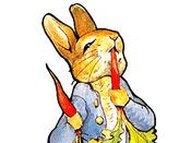 彼得兔 1.1