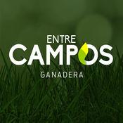Entre Campos 1.0.3