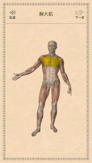 经典解剖学