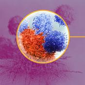 AZ Immune Related AE Management