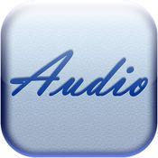 AUDIO MATRIX Pro 1