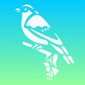 Bird Calls  1.1