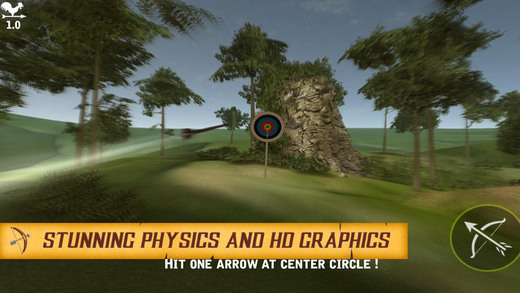 Archer Skill Shooting 3D