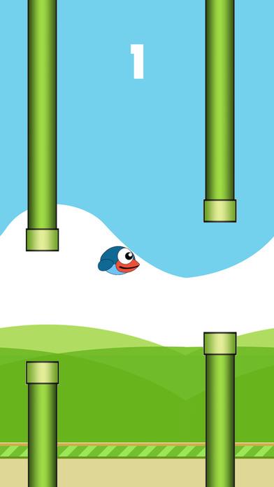 Aves Bird