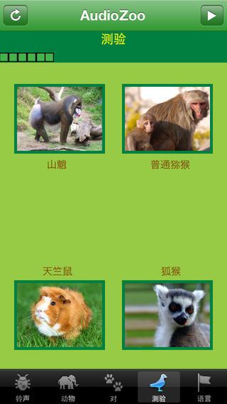 AudioZoo: 动物声音