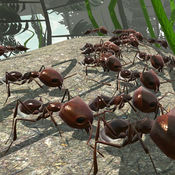 Ant Simulator 3D 2.3