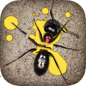 Ant Smasher Games 1