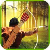 Archery Hunting Master
