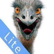 Aussie Wildlife Lite