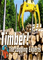 伐木工木材专家