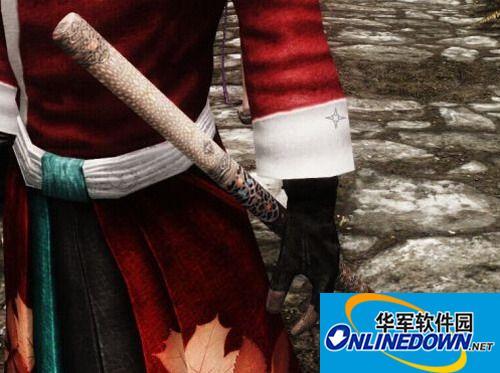 上古卷轴5:天际 唐仪刀与竹中剑MOD