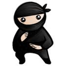 System Ninja  ...