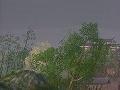 剑网3动画编辑器  官方最新版