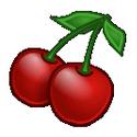 CherryTree  官方中文版 v0.35.8