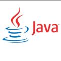 Java SE Runtime Environment  官方免费版