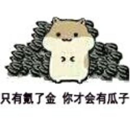 小仓鼠吃瓜子表情包图片