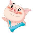 微信猪淘客助手...