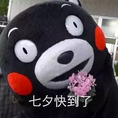 七夕熊本熊表情包无水印版