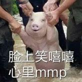 猪的表情包大全...