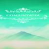 Conjuntalia汉化补丁 3DM版