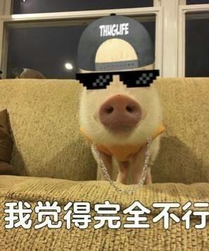 猪猪我觉得不行表情图片