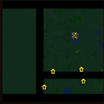种族森林1.0.3