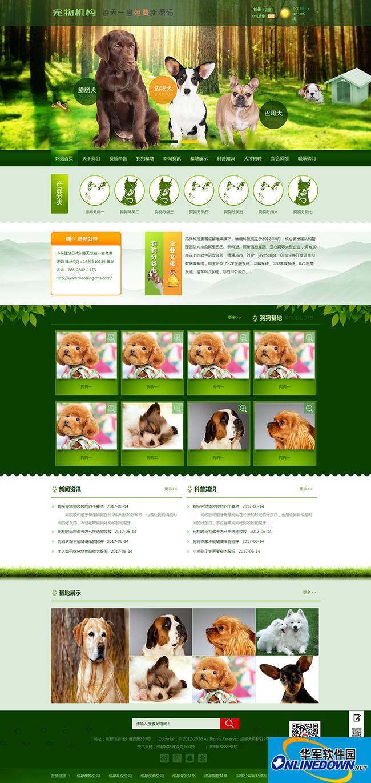 宠物网站模板源码
