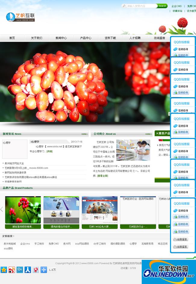 艺帆绿色清爽医药类网站源码 1.7