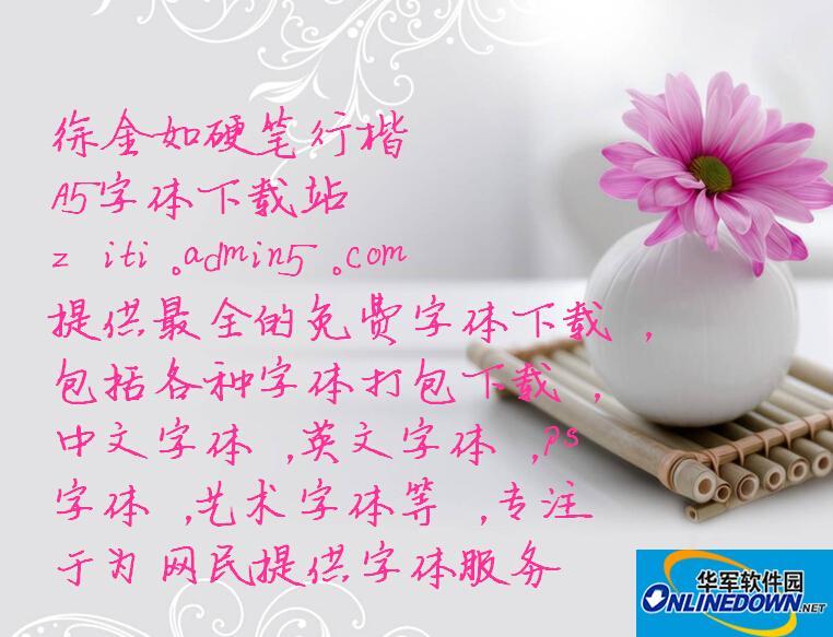 徐金如硬笔行楷 PC版
