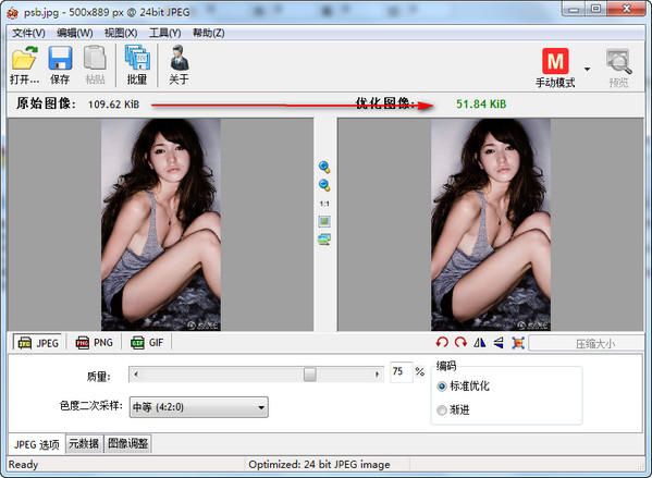 图片压缩器(Radical Image Optimization Tool) V0.5.2.0绿